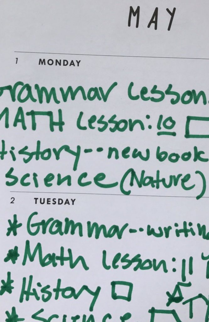 Example of a Middle Schooler Using a Planner for Homeschooling