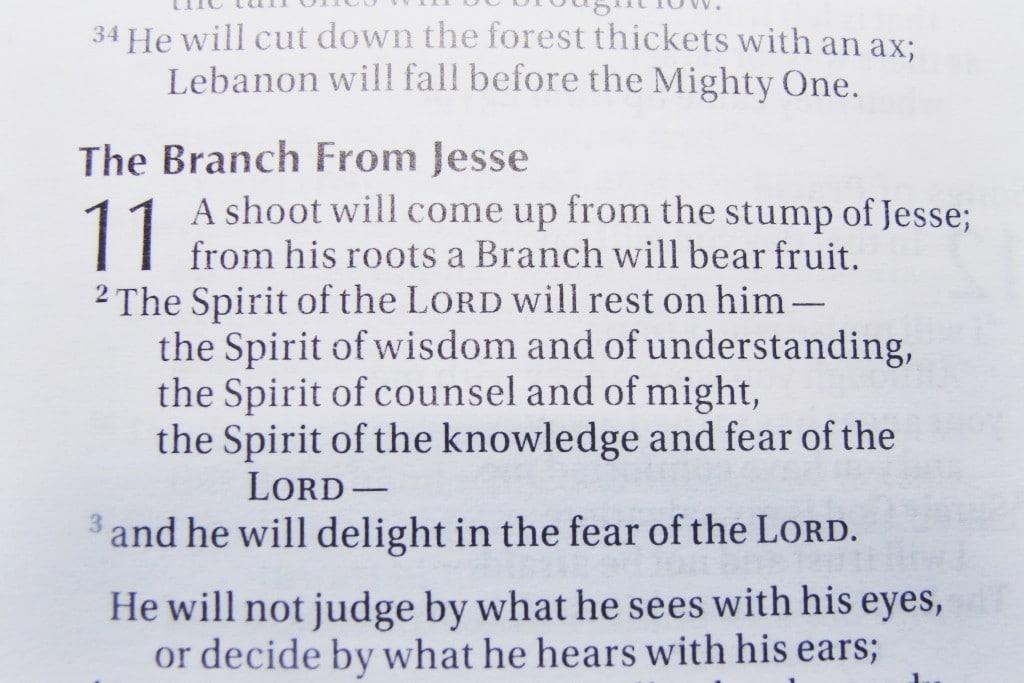 Jesse Tree Scripture Passage