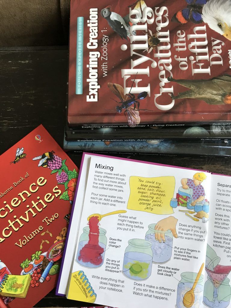 I love learning what curriculum other homeschool families are using with their kids! Here's a peek into what I'm using with with my 1st grade son (and why)! Here's our Apologia science and Usborne Science Activity books!