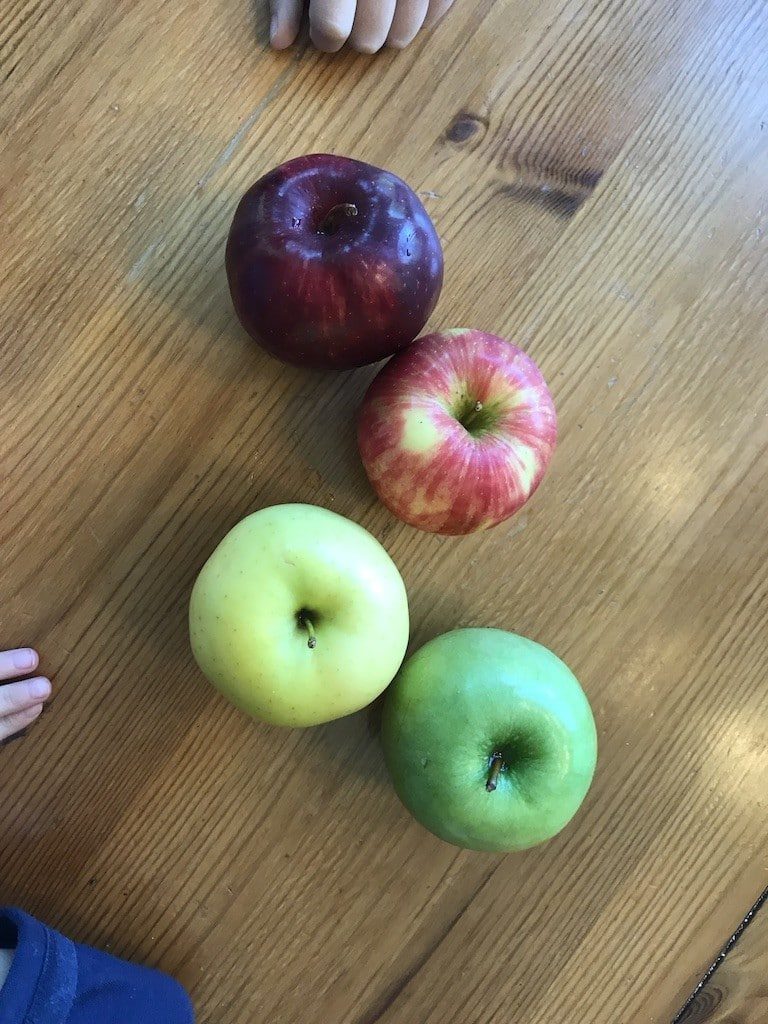 Four apples for preschool taste test! Part of letter a and apple thematic unit.